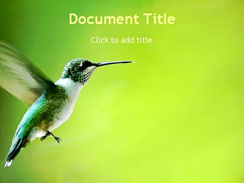 1677 - powerpoint - wildlife & nature - powerpoint templates, Powerpoint templates
