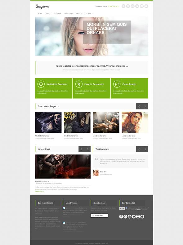 Snapzone - Responsive Website Template - Responsive Website ...