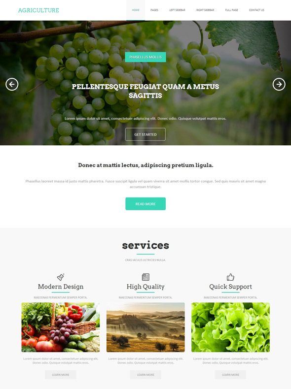 Poultry farms HTML Template - Agriculture & Farming - Website ...
