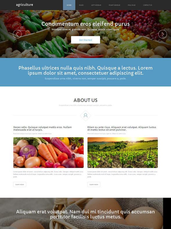 Vegetables Website Template - Agriculture & Farming - Website ...