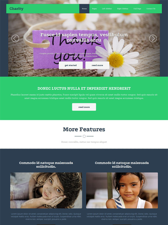 Charity Site Template - Charity - Website Templates - DreamTemplate