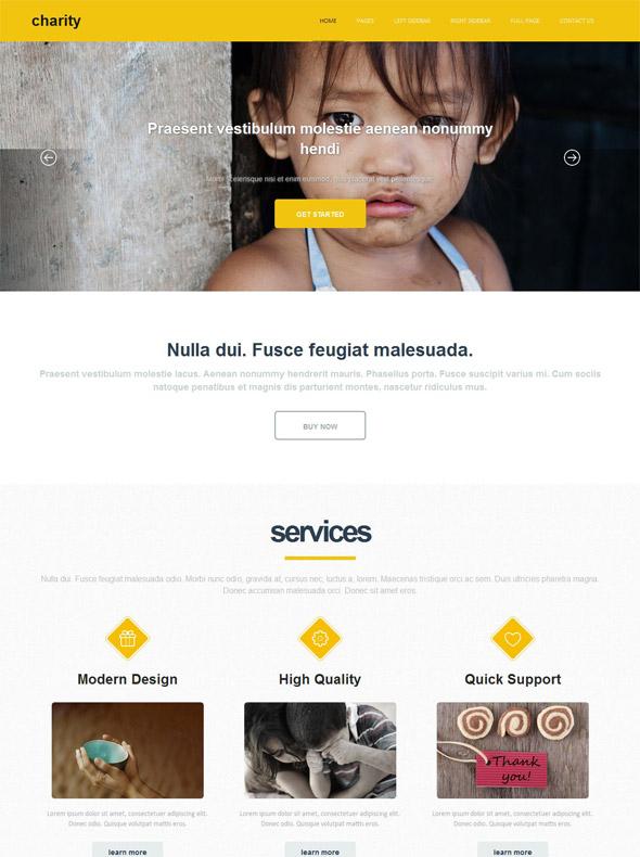 Charity Website Template - Charity - Website Templates - DreamTemplate