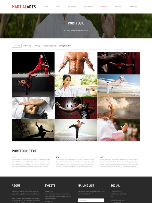 Kung Fu Website Template