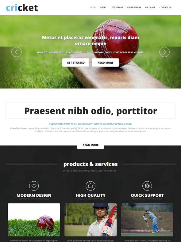 cricket website template - cricket