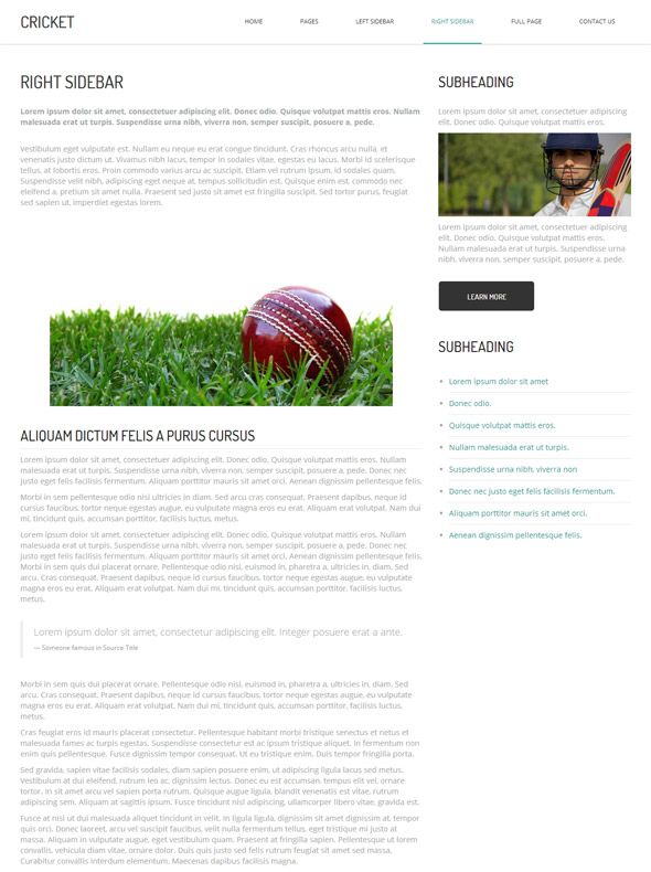 Cricket HTML Template - Cricket - Website Templates
