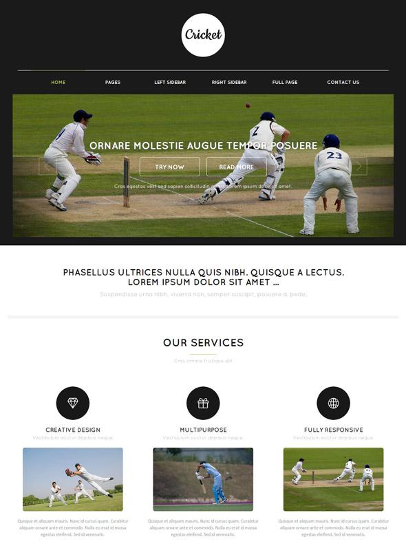 cricket web template - cricket