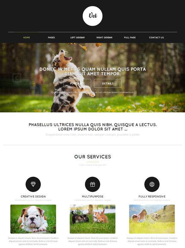 Vet web template veterinary website templates dreamtemplate vet web template toneelgroepblik Choice Image