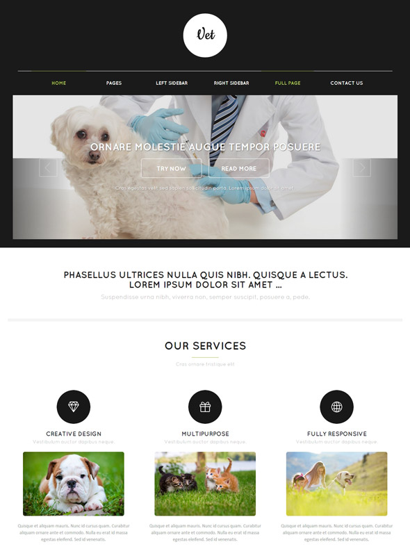 Vet Web Template - Veterinary - Website Templates - DreamTemplate