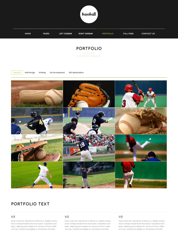 Baseball Web Template - Baseball - Sports - DreamTemplate