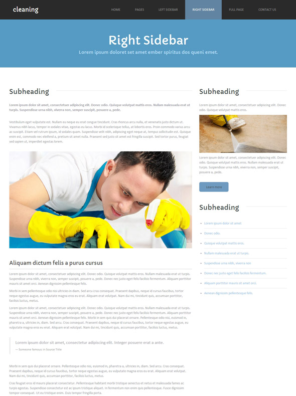 cleaning products web template cleaning website templates dreamtemplate. Black Bedroom Furniture Sets. Home Design Ideas