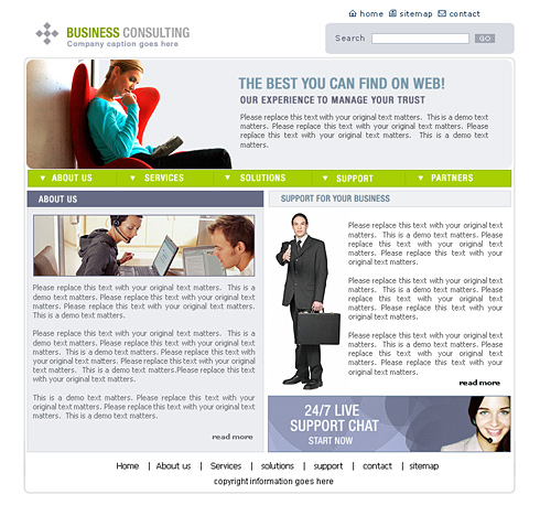 Business consulting website template 0444 clean corporate main preview image friedricerecipe