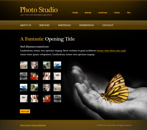 photo gallery web template 6072 art photography website